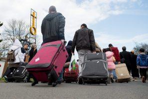 أخبار ألمانيا: العودة الطوعية إلى سوريا: عدد اللاجئين السوريين الذين عادوا طوعاً إلى بلادهم