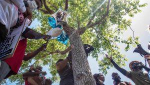 العثور على جثة رجل أسود معلقة على شجرة في ولاية كاليفورنيا الأمريكية