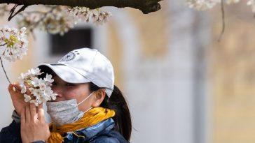 فقدان حاسة الشم نتيجة الإصابة بفيروس كورونا