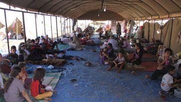 محنة الأطفال الأيزيديين ضحايا داعش