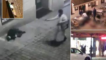 وزارة الداخلية النمساوية تكشف معلومات عن هوية أحد منفذي هجوم فيينا