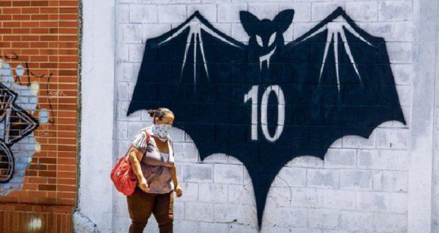 فرنسا: وفاة رجل ستيني بعد إصابته بفيروس الخفافيش الأوروبي