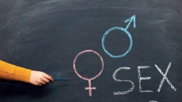 التربية الجنسية المدرسة