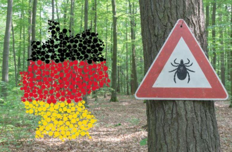 القراد في ألمانيا