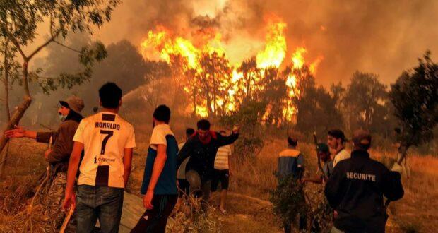 حرائق الجزائر