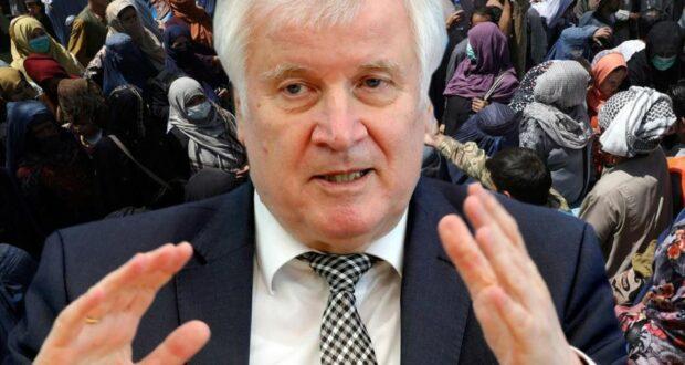 أفغانستان اللاجئين ألمانيا